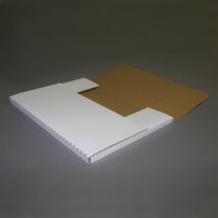 IBM-ROS Ident. 15 x 11 1/8 x 2 Bookfold Mailers